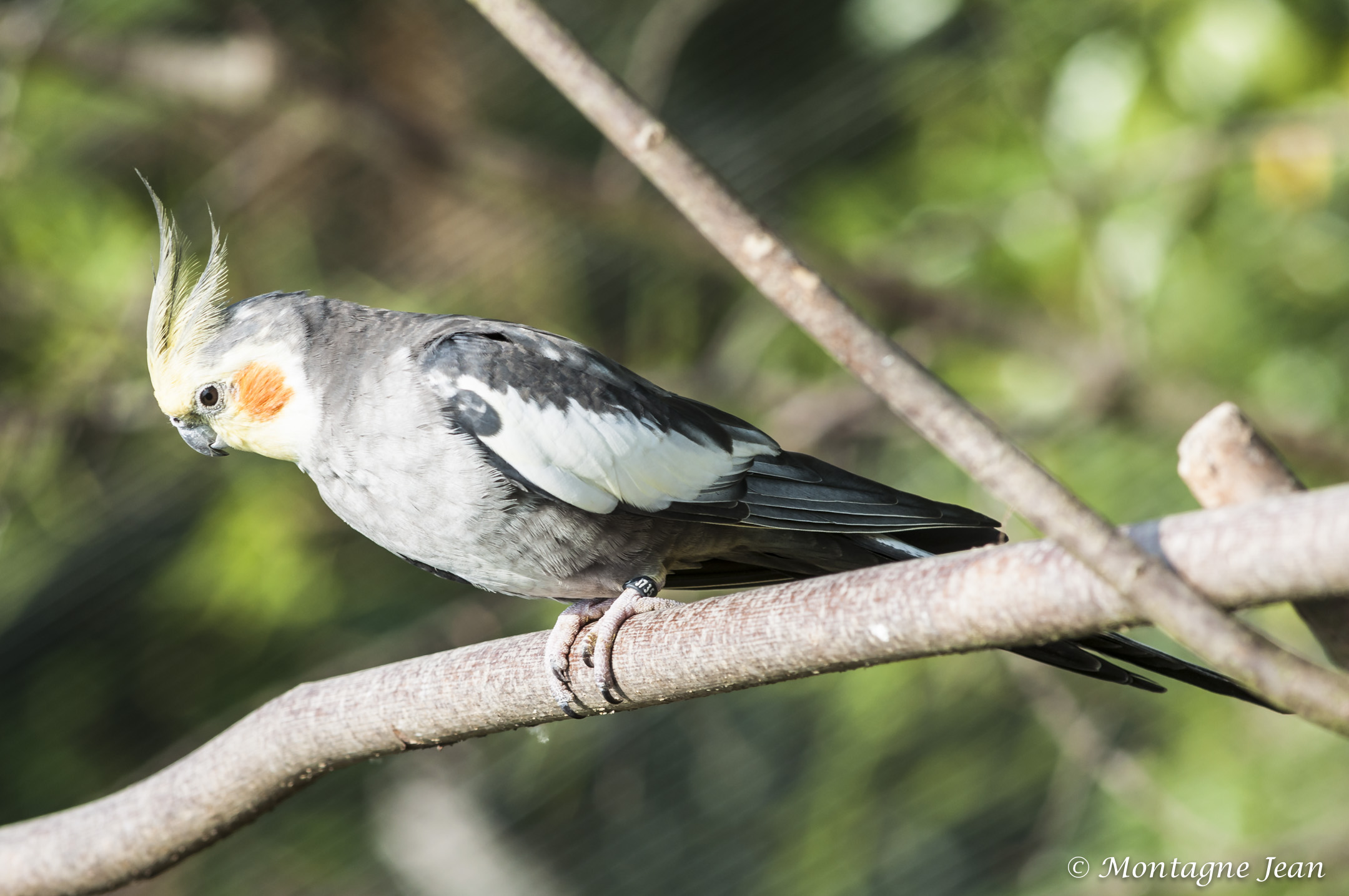 140909_spaycific Zoo_0341