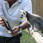 140909_spaycific Zoo_0134